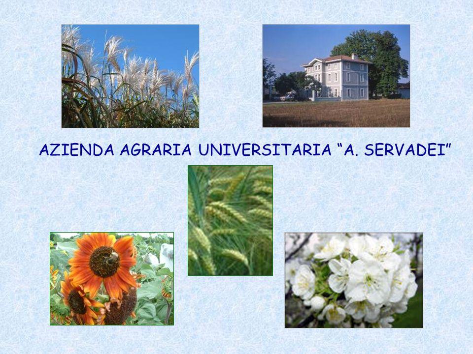 AZIENDA AGRARIA UNIVERSITARIA A. SERVADEI