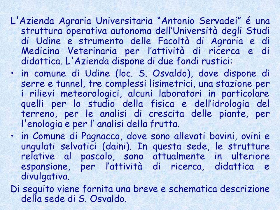 L'Azienda Agraria Universitaria Antonio Servadei é una struttura operativa autonoma dellUniversità degli Studi di Udine e strumento delle Facoltà di A