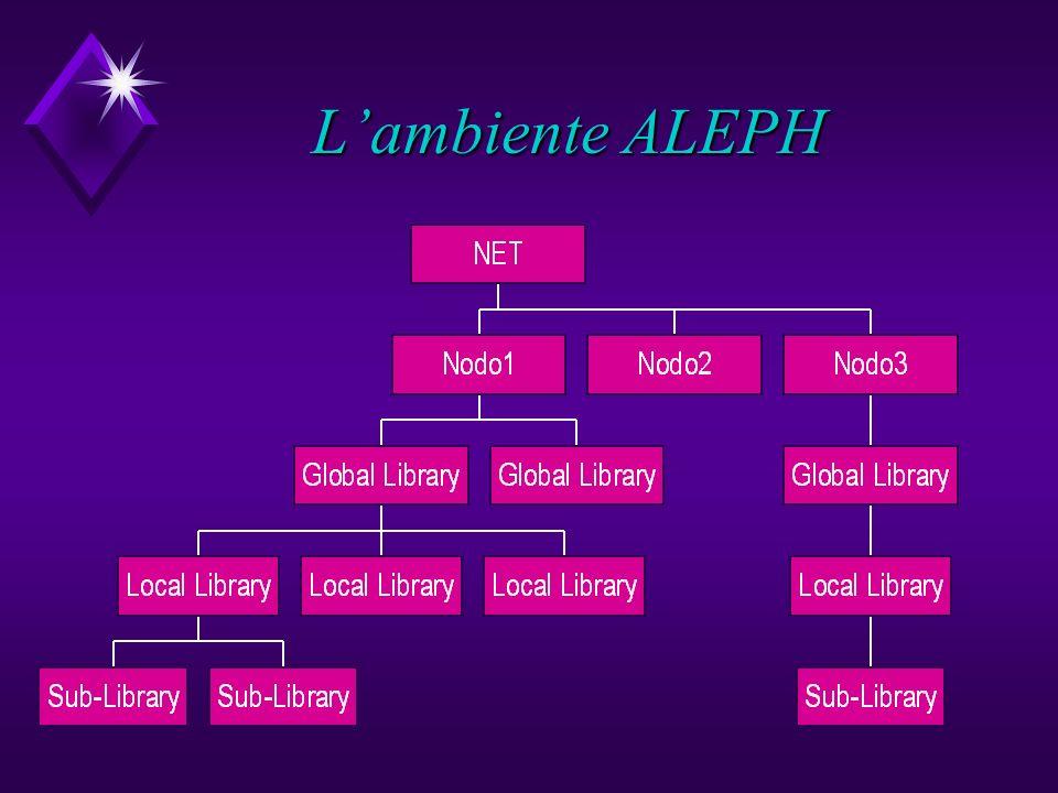 Lambiente ALEPH