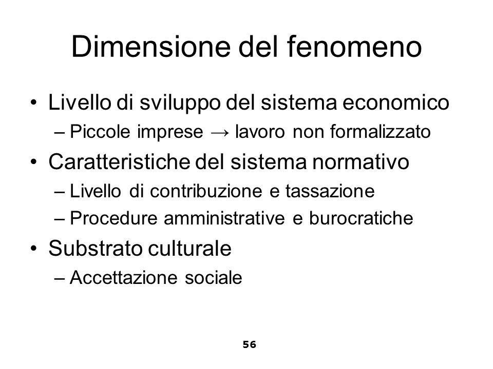 Dimensione del fenomeno Livello di sviluppo del sistema economico –Piccole imprese lavoro non formalizzato Caratteristiche del sistema normativo –Live