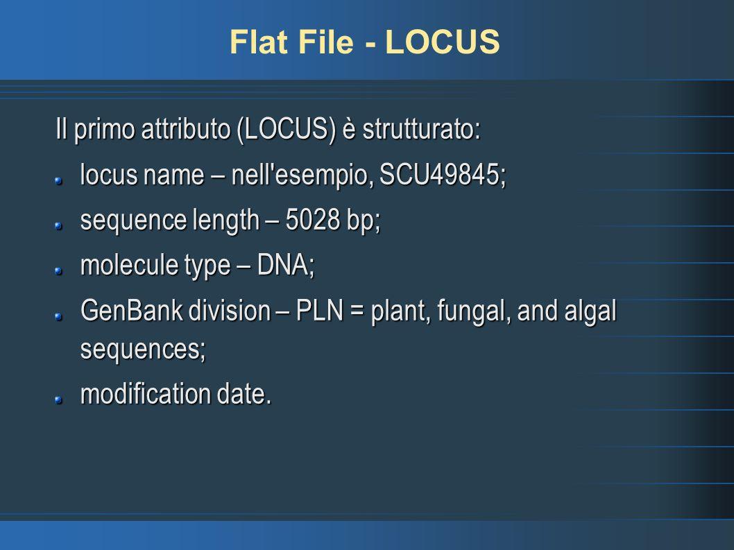 Flat File - LOCUS Il primo attributo (LOCUS) è strutturato: locus name – nell esempio, SCU49845; sequence length – 5028 bp; molecule type – DNA; GenBank division – PLN = plant, fungal, and algal sequences; modification date.