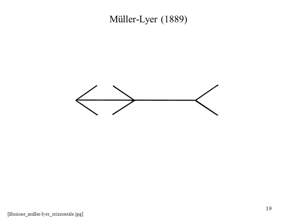 19 Müller-Lyer (1889) [illusione_müller-lyer_orizzontale.jpg]