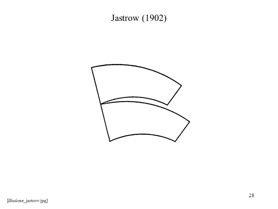 28 Jastrow (1902) [illusione_jastrow.jpg]