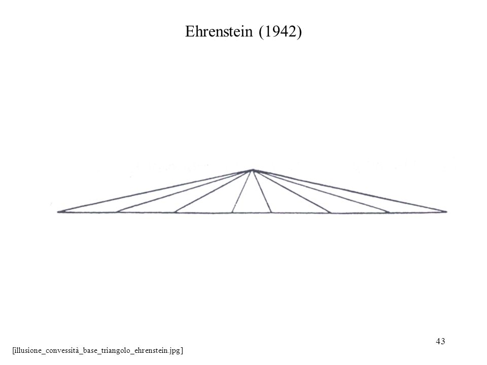 43 Ehrenstein (1942) [illusione_convessità_base_triangolo_ehrenstein.jpg]