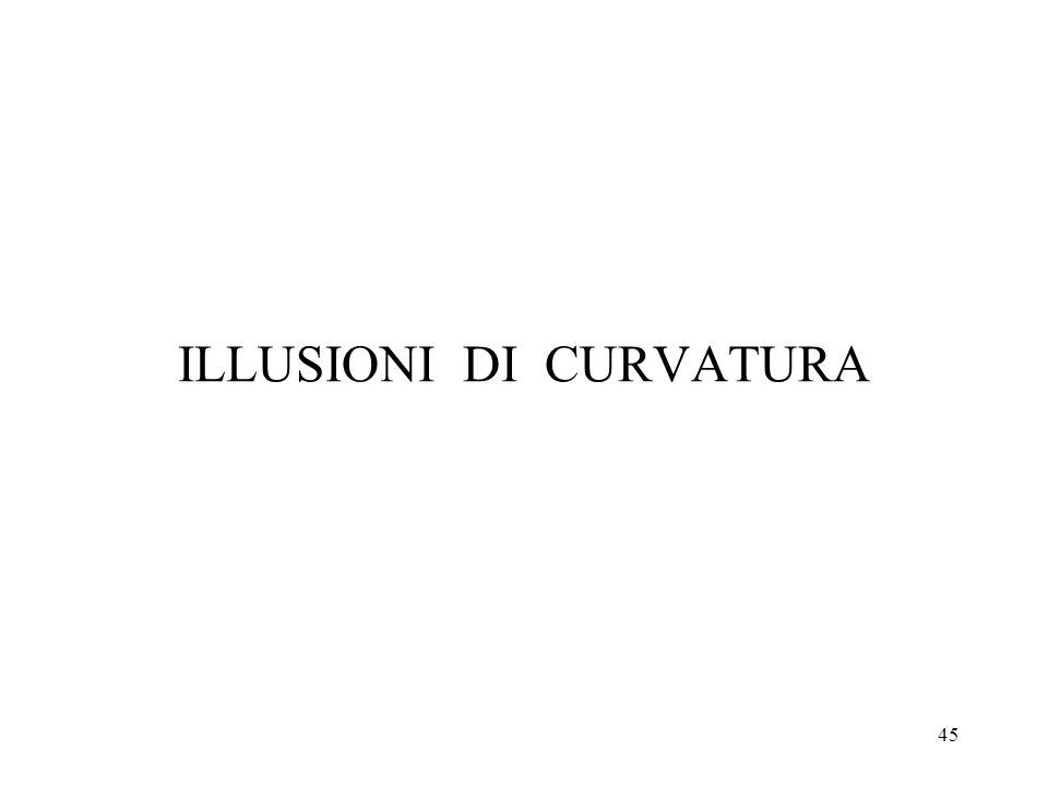 45 ILLUSIONI DI CURVATURA