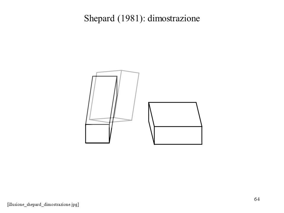 64 Shepard (1981): dimostrazione [illusione_shepard_dimostrazione.jpg]