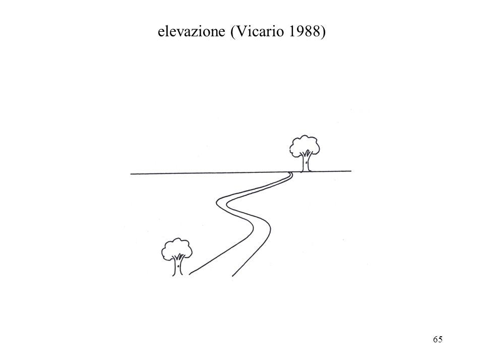 65 elevazione (Vicario 1988)