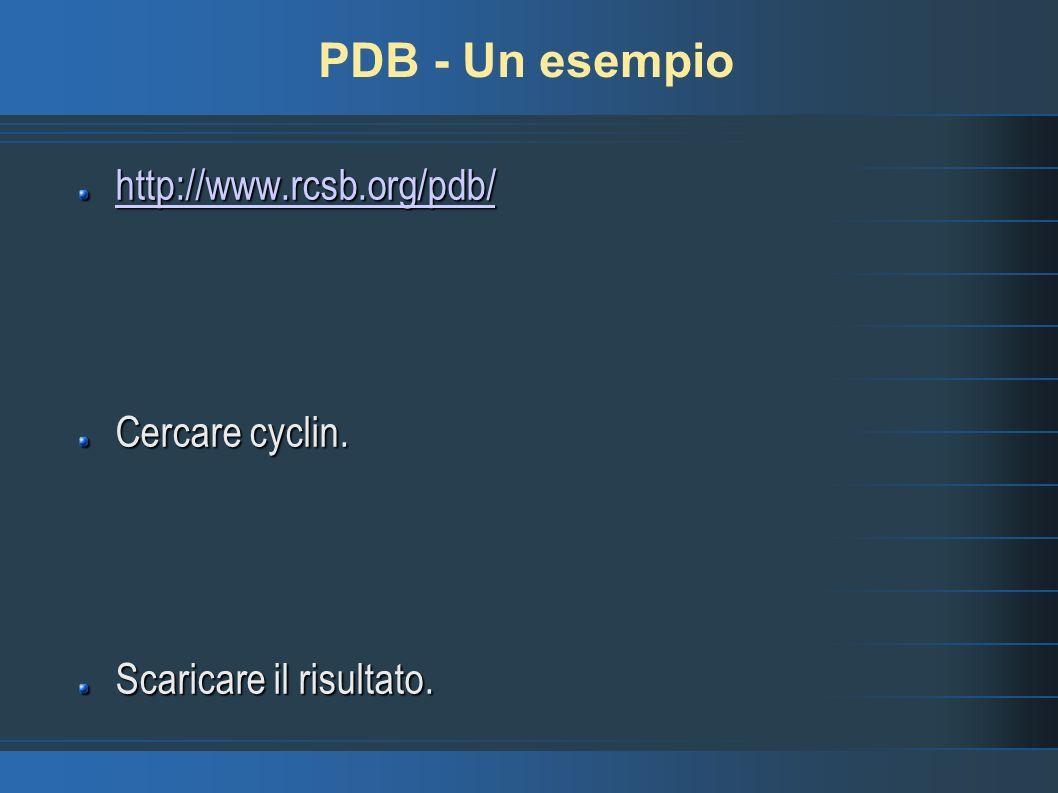 PDB - Un esempio http://www.rcsb.org/pdb/ Cercare cyclin. Scaricare il risultato.