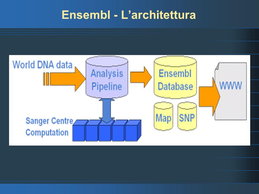 Ensembl - Larchitettura