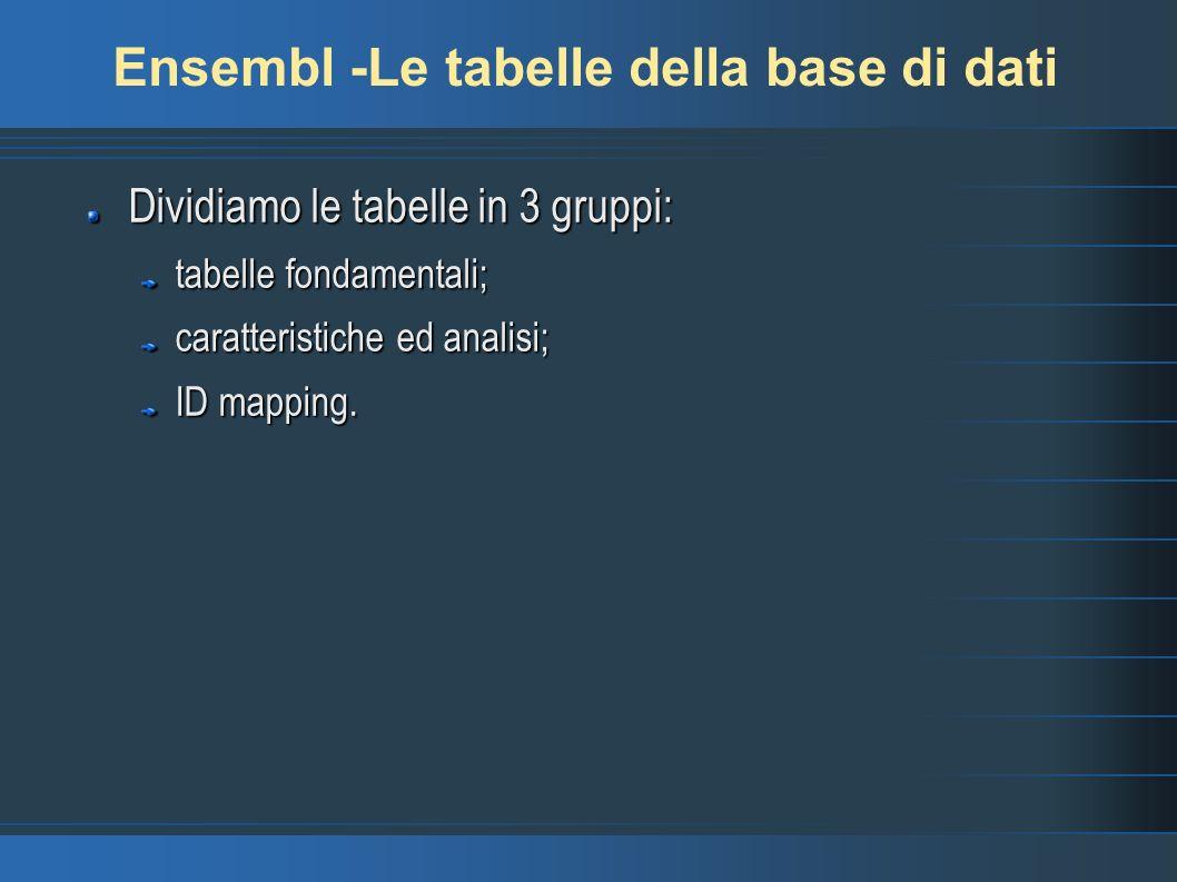Ensembl -Le tabelle della base di dati Dividiamo le tabelle in 3 gruppi: tabelle fondamentali; caratteristiche ed analisi; ID mapping.