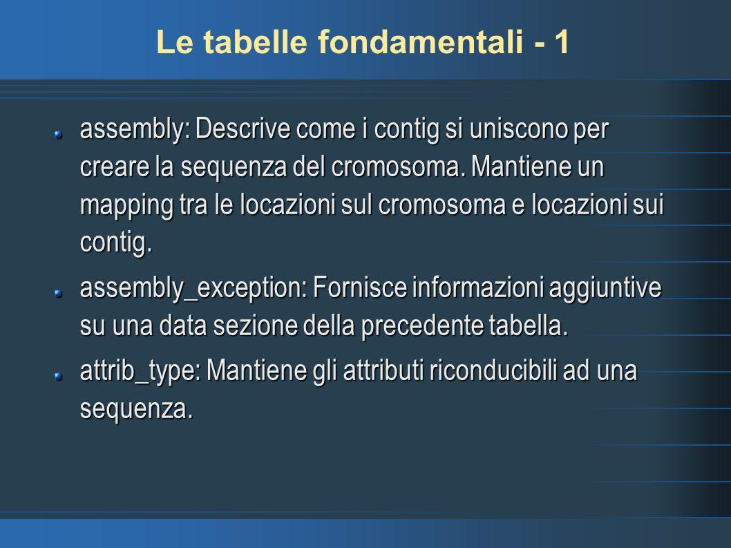 Le tabelle fondamentali - 1 assembly: Descrive come i contig si uniscono per creare la sequenza del cromosoma. Mantiene un mapping tra le locazioni su