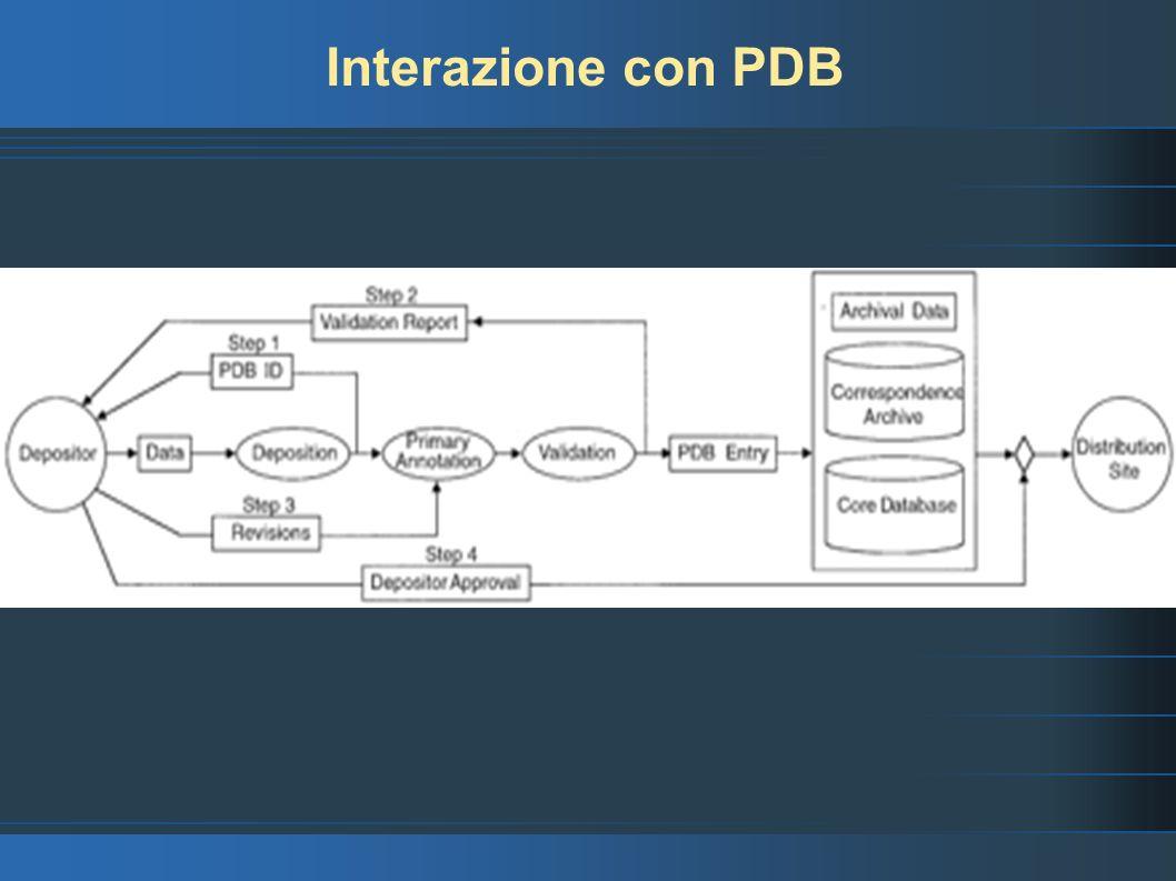 PDB – La base di dati (1) Le basi di ati che costituiscono PDB sono: Il core relational database (Sybase), che contiene i dati sperimentali primari e i dati relativi alle coordinate.