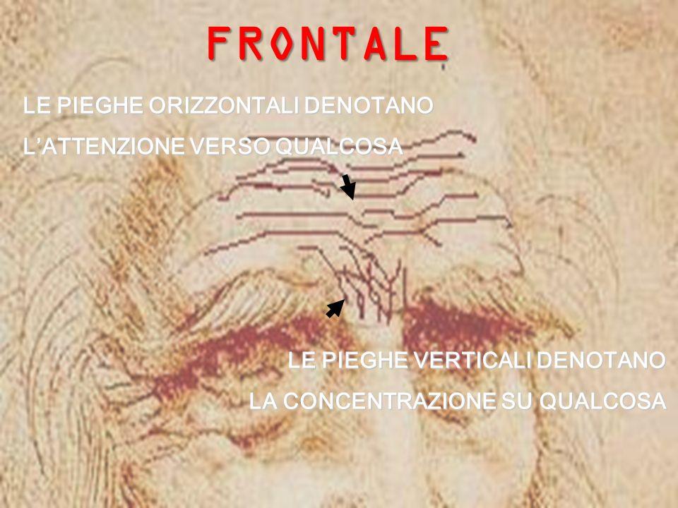 Copyright M.Toffanin 2007 FRONTALE LE PIEGHE ORIZZONTALI DENOTANO LATTENZIONE VERSO QUALCOSA LE PIEGHE VERTICALI DENOTANO LA CONCENTRAZIONE SU QUALCOSA