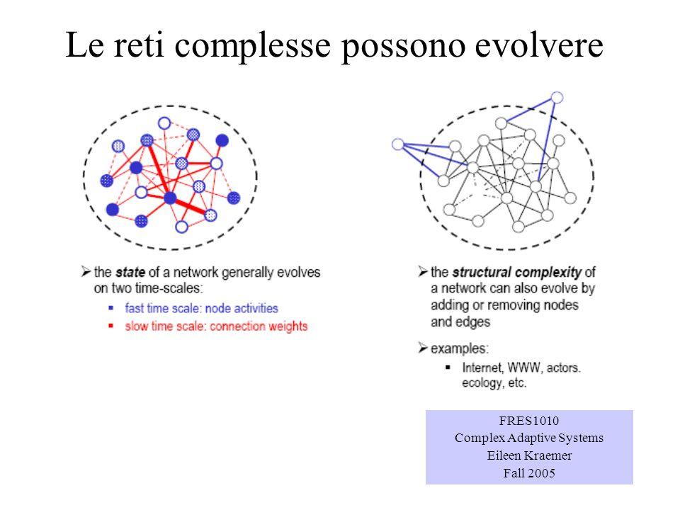 Le reti complesse possono evolvere FRES1010 Complex Adaptive Systems Eileen Kraemer Fall 2005