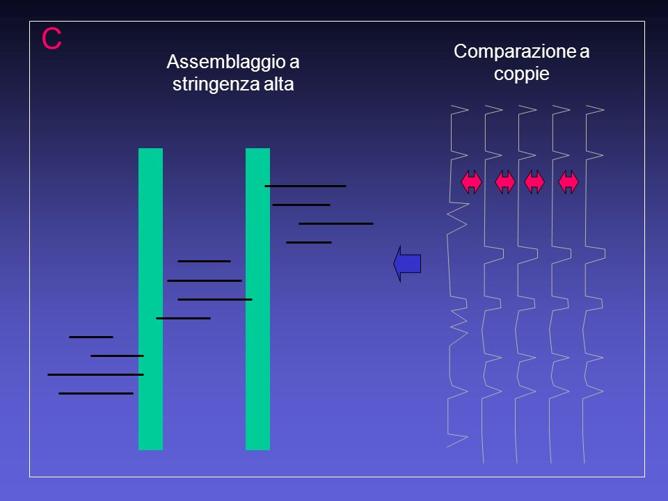 Comparazione a coppie Assemblaggio a stringenza alta C