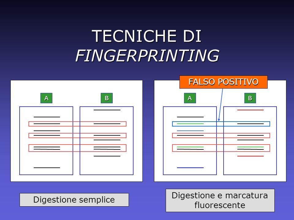 AB TECNICHE DI FINGERPRINTING AB Digestione semplice Digestione e marcatura fluorescente FALSO POSITIVO