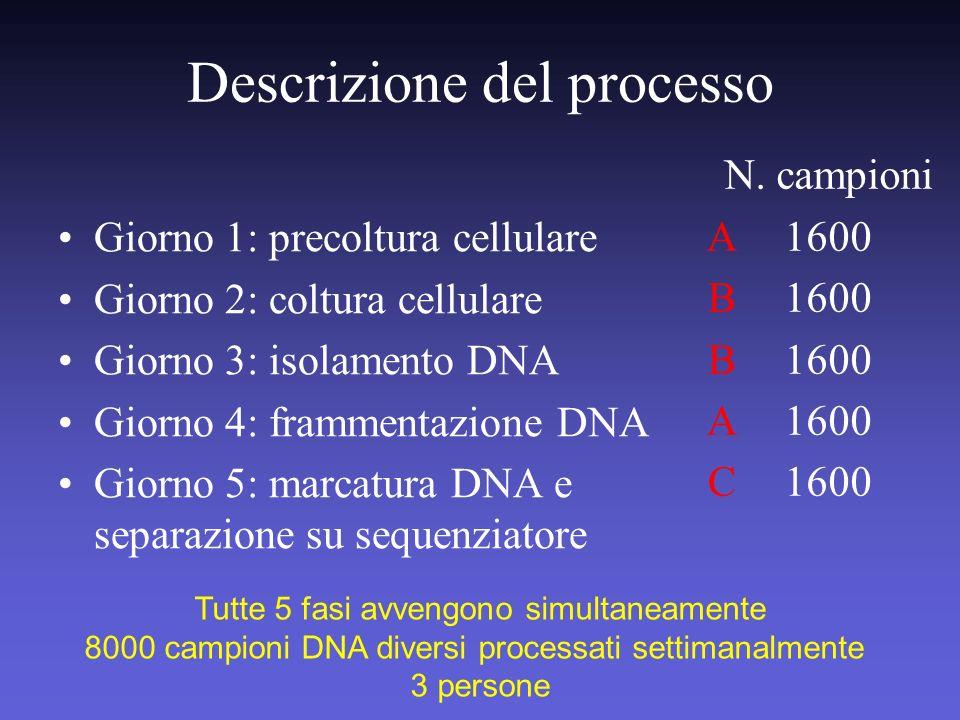 Descrizione del processo Giorno 1: precoltura cellulare Giorno 2: coltura cellulare Giorno 3: isolamento DNA Giorno 4: frammentazione DNA Giorno 5: ma