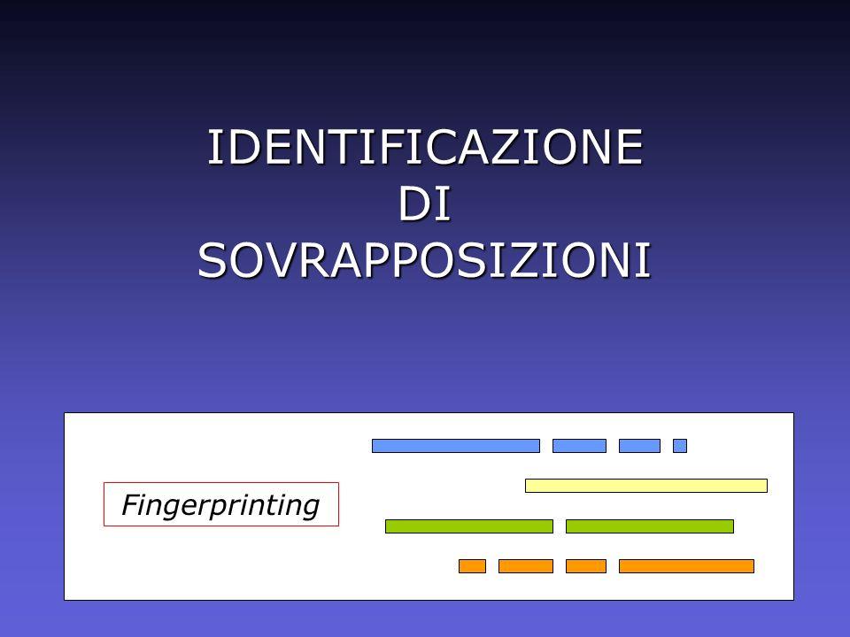 Fingerprinting IDENTIFICAZIONE DI SOVRAPPOSIZIONI