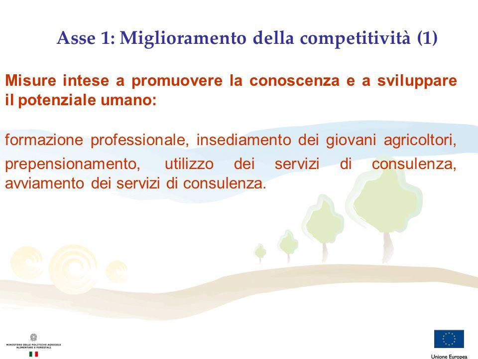 Asse 1: Miglioramento della competitività (1) Misure intese a promuovere la conoscenza e a sviluppare il potenziale umano: formazione professionale, i