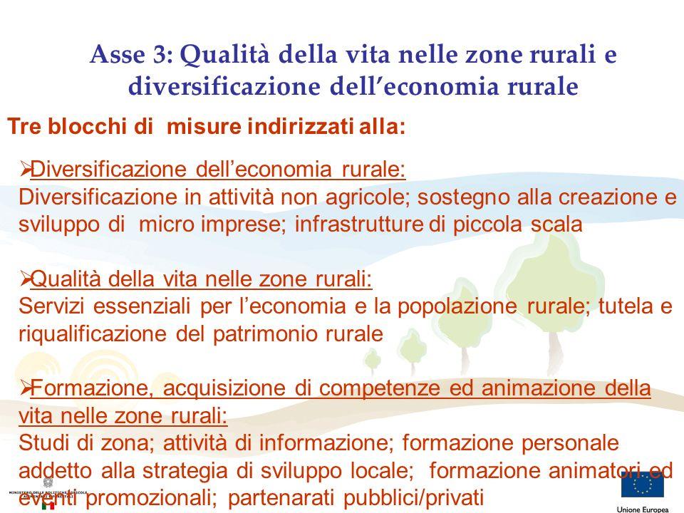Tre blocchi di misure indirizzati alla: Diversificazione delleconomia rurale: Diversificazione in attività non agricole; sostegno alla creazione e svi