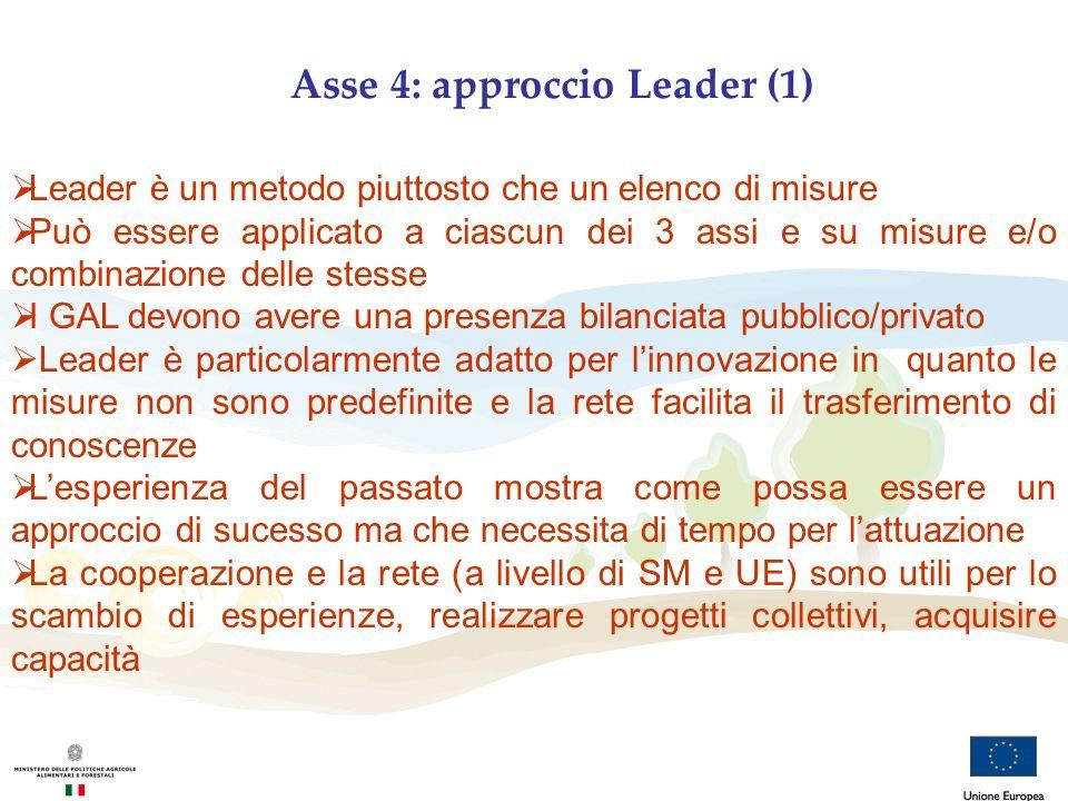 Asse 4: approccio Leader (1) Leader è un metodo piuttosto che un elenco di misure Può essere applicato a ciascun dei 3 assi e su misure e/o combinazio