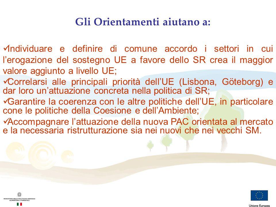 Gli Orientamenti aiutano a: Individuare e definire di comune accordo i settori in cui lerogazione del sostegno UE a favore dello SR crea il maggior va