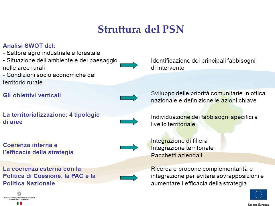 Struttura del PSN Gli obiettivi verticali La territorializzazione: 4 tipologie di aree Individuazione dei fabbisogni specifici a livello territoriale