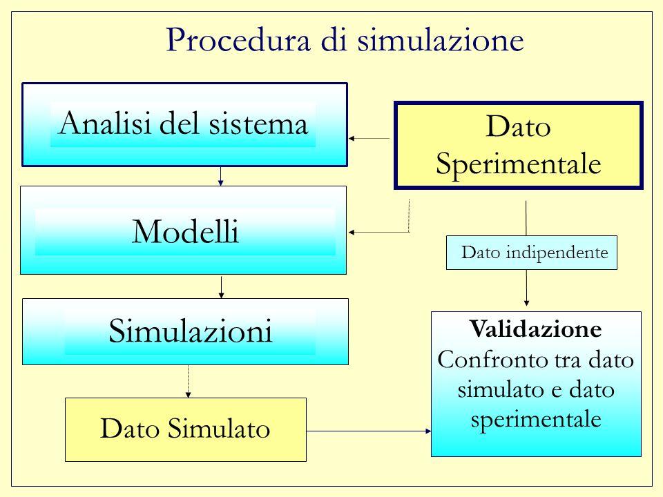 Procedura di simulazione Dato Sperimentale Validazione Confronto tra dato simulato e dato sperimentale Dato indipendente Analisi del sistema Simulazioni Dato Simulato Modelli