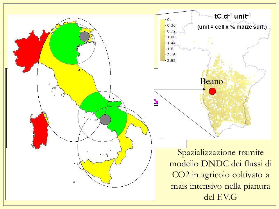 Un esempio tC d -1 unit -1 (unit = cell x % maize surf.) Beano Spazializzazione tramite modello DNDC dei flussi di CO2 in agricolo coltivato a mais intensivo nella pianura del F.V.G