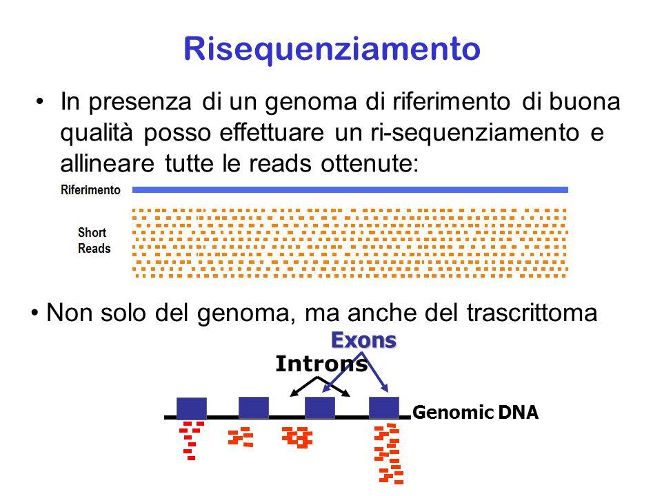 Risequenziamento In presenza di un genoma di riferimento di buona qualità posso effettuare un ri-sequenziamento e allineare tutte le reads ottenute: N