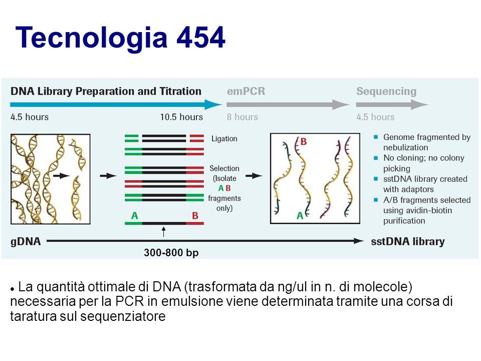 Tecnologia 454 La quantità ottimale di DNA (trasformata da ng/ul in n. di molecole) necessaria per la PCR in emulsione viene determinata tramite una c