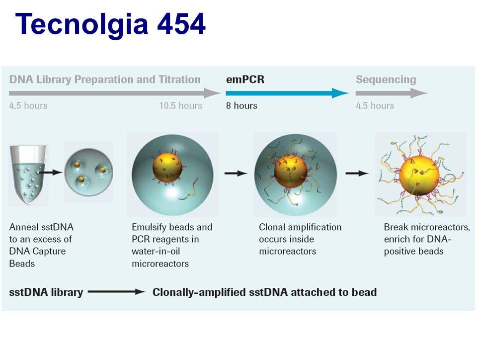 Tecnolgia 454