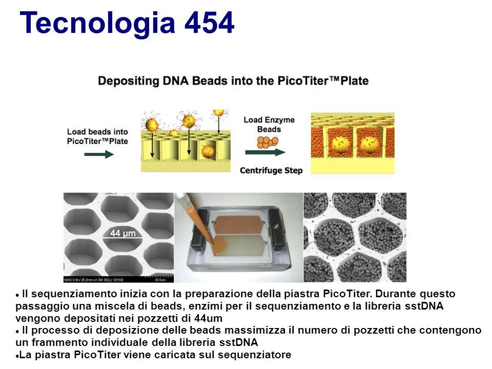 Tecnologia 454 Il sequenziamento inizia con la preparazione della piastra PicoTiter. Durante questo passaggio una miscela di beads, enzimi per il sequ