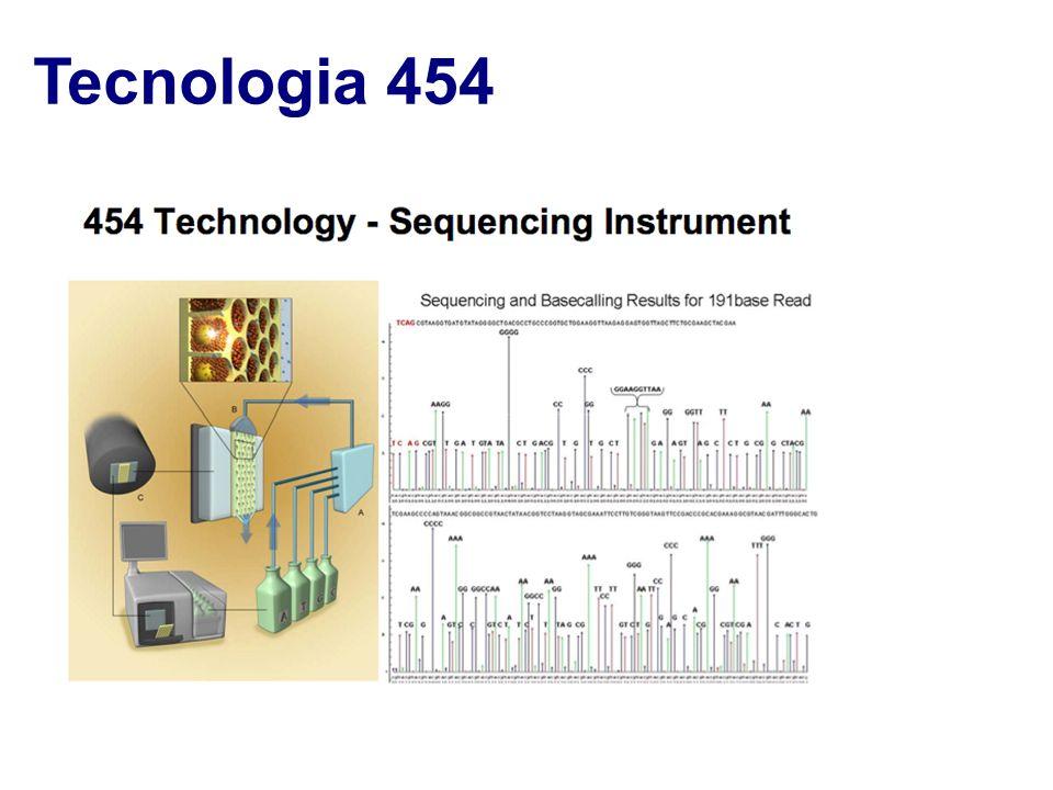 Tecnologia 454