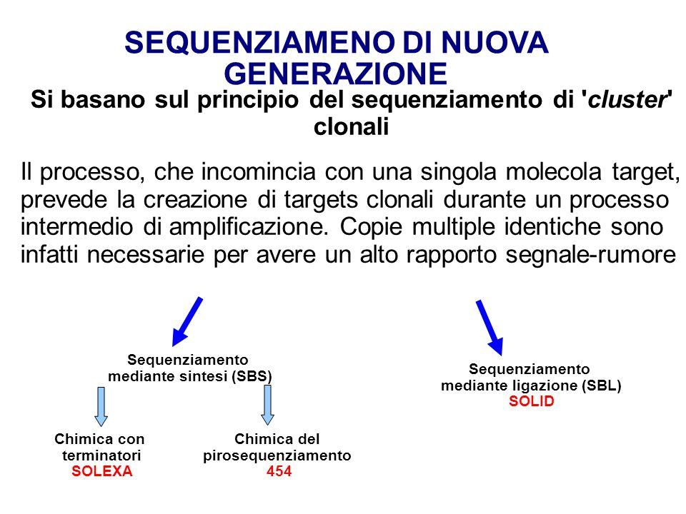 Si basano sul principio del sequenziamento di cluster clonali Il processo, che incomincia con una singola molecola target, prevede la creazione di targets clonali durante un processo intermedio di amplificazione.