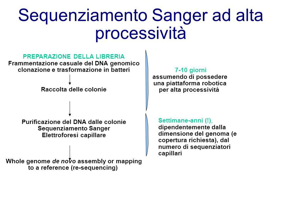 Sequenziamento Sanger ad alta processività PREPARAZIONE DELLA LIBRERIA Frammentazione casuale del DNA genomico clonazione e trasformazione in batteri