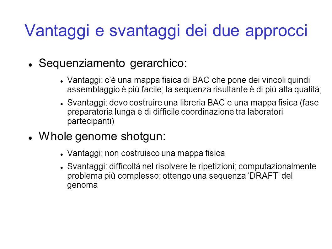 Vantaggi e svantaggi dei due approcci Sequenziamento gerarchico: Vantaggi: cè una mappa fisica di BAC che pone dei vincoli quindi assemblaggio è più facile; la sequenza risultante è di più alta qualità; Svantaggi: devo costruire una libreria BAC e una mappa fisica (fase preparatoria lunga e di difficile coordinazione tra laboratori partecipanti) Whole genome shotgun: Vantaggi: non costruisco una mappa fisica Svantaggi: difficoltà nel risolvere le ripetizioni; computazionalmente problema più complesso; ottengo una sequenza DRAFT del genoma