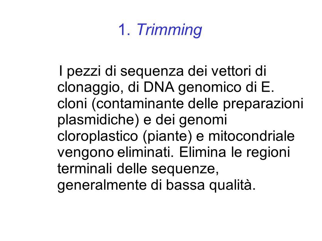 1. Trimming I pezzi di sequenza dei vettori di clonaggio, di DNA genomico di E.