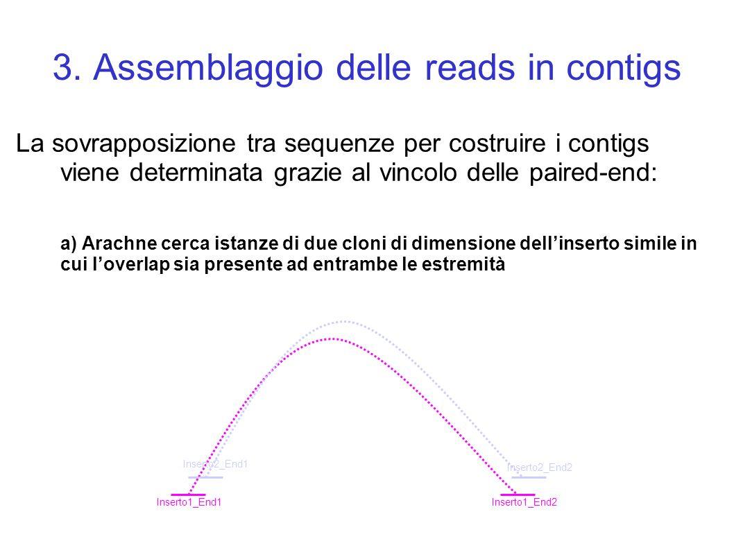 3. Assemblaggio delle reads in contigs La sovrapposizione tra sequenze per costruire i contigs viene determinata grazie al vincolo delle paired-end: a