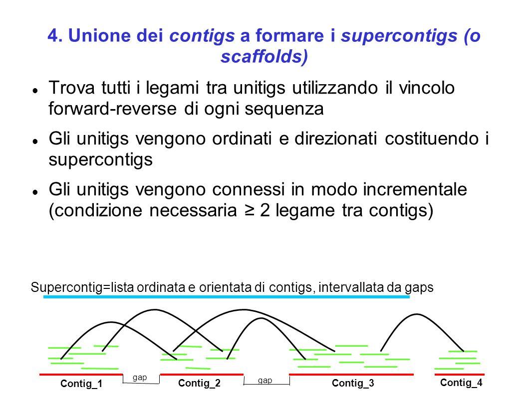 4. Unione dei contigs a formare i supercontigs (o scaffolds) Trova tutti i legami tra unitigs utilizzando il vincolo forward-reverse di ogni sequenza