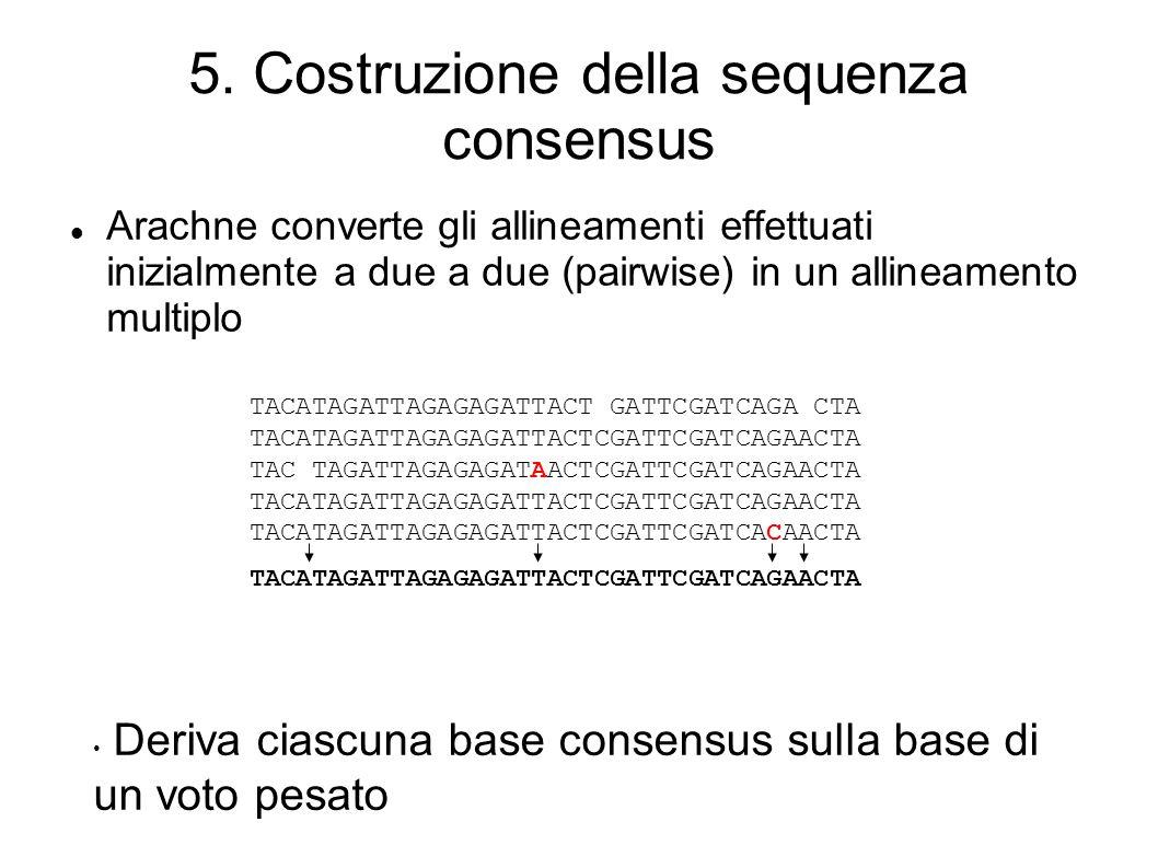5. Costruzione della sequenza consensus Arachne converte gli allineamenti effettuati inizialmente a due a due (pairwise) in un allineamento multiplo T