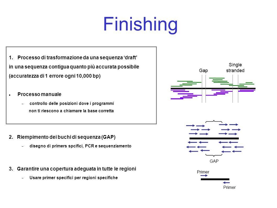 Finishing 1.Processo di trasformazione da una sequenza draft in una sequenza contigua quanto più accurata possibile (accuratezza di 1 errore ogni 10,000 bp) Processo manuale controllo delle posizioni dove i programmi non ti riescono a chiamare la base corretta 2.