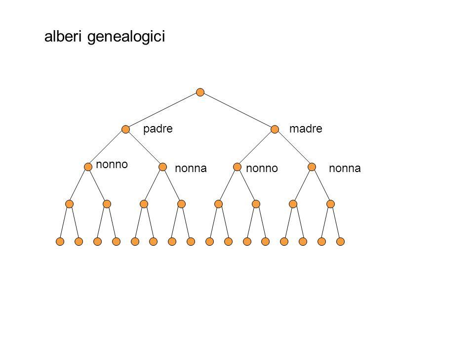 alberi genealogici padremadre nonno nonna