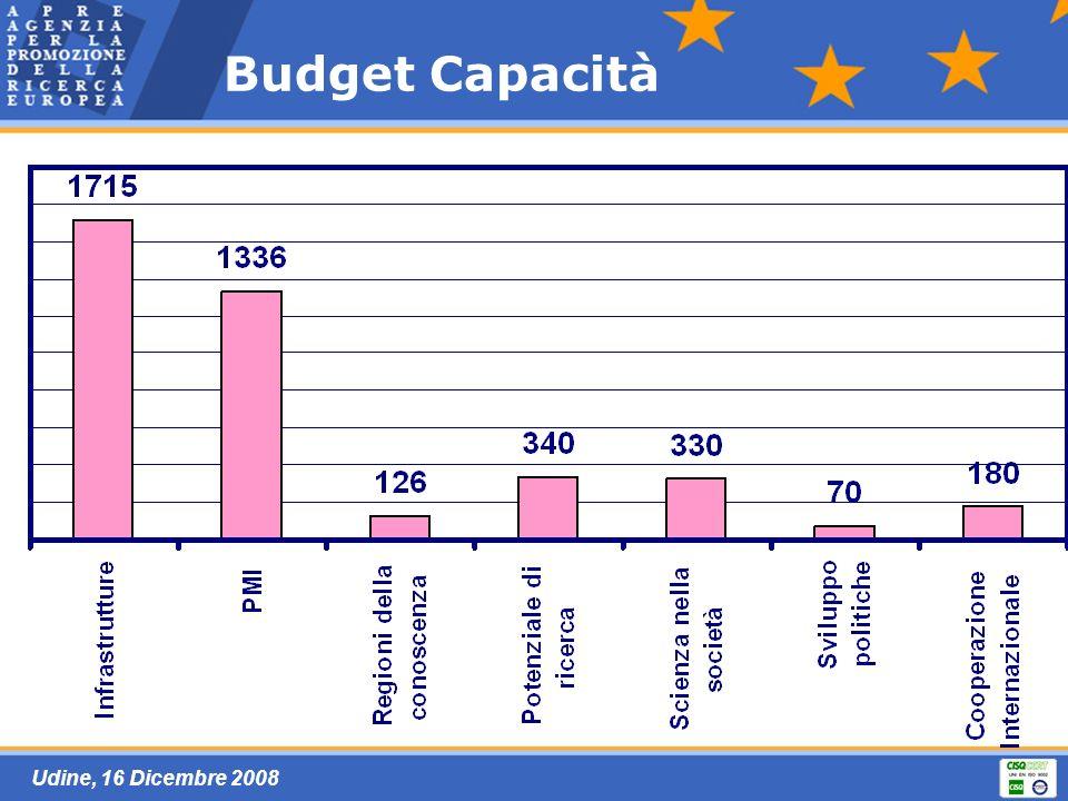 Udine, 16 Dicembre 2008 Budget Capacità