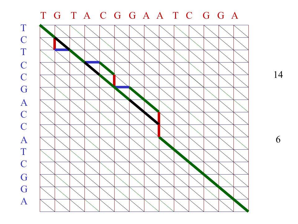 T G T A C G G A A T C G G A TCTTCT CCGCCG ACCACC ATCATC GGAGGA 14 6