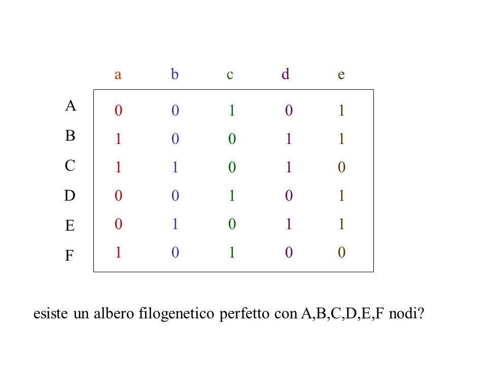 A B C D E F abcde 0 1 1 0 0 10 0 0 1 1 1 0 0 1 1 1 10 0 0 0 1 1 0 0 0 1 1 1 esiste un albero filogenetico perfetto con A,B,C,D,E,F nodi?