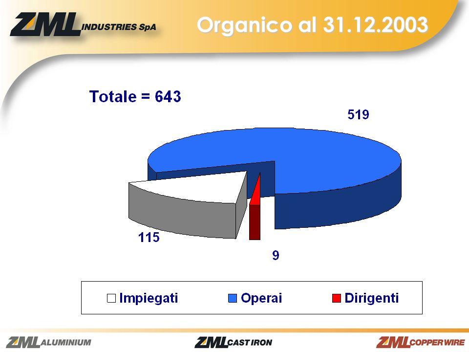 Organico al 31.12.2003