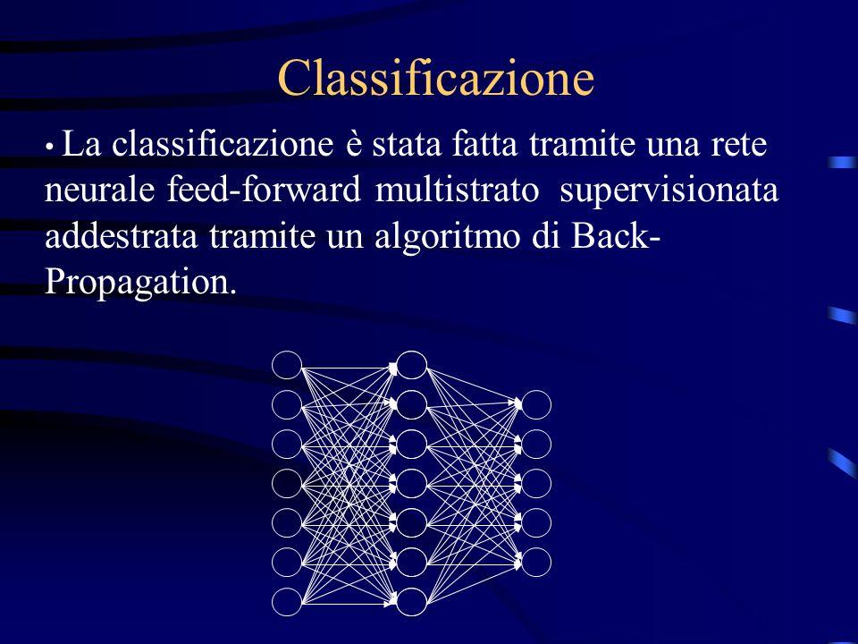 Il sistema non deve risentire di problemi legati a: Differenze individuali Problemi di segmentazione dellimmagine rotazione casuale degli organismi di