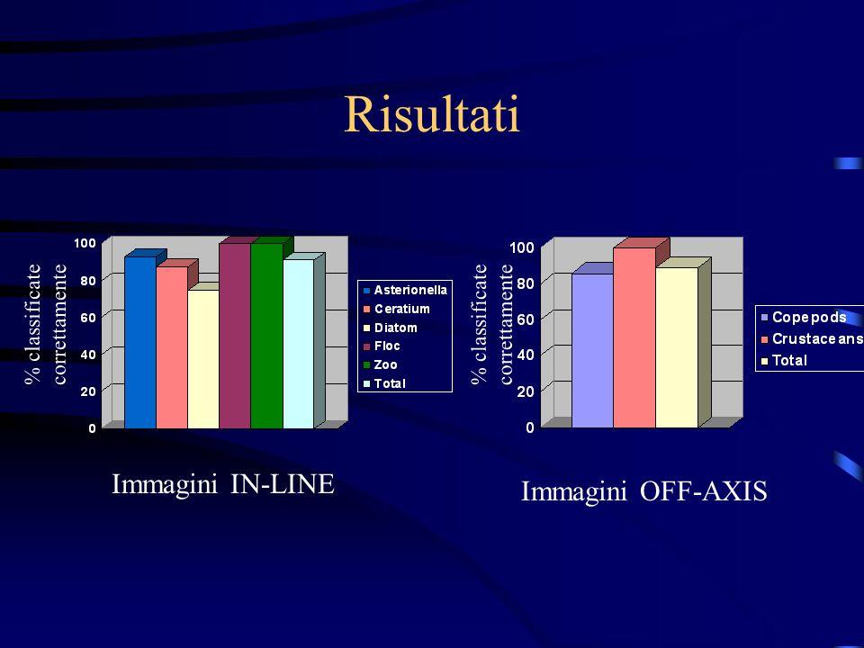 Classificazione La classificazione è stata fatta tramite una rete neurale feed-forward multistrato supervisionata addestrata tramite un algoritmo di B