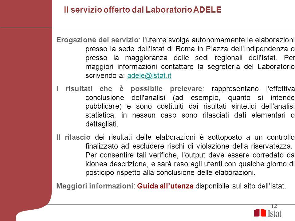 12 Erogazione del servizio: lutente svolge autonomamente le elaborazioni presso la sede dell'Istat di Roma in Piazza dell'Indipendenza o presso la mag